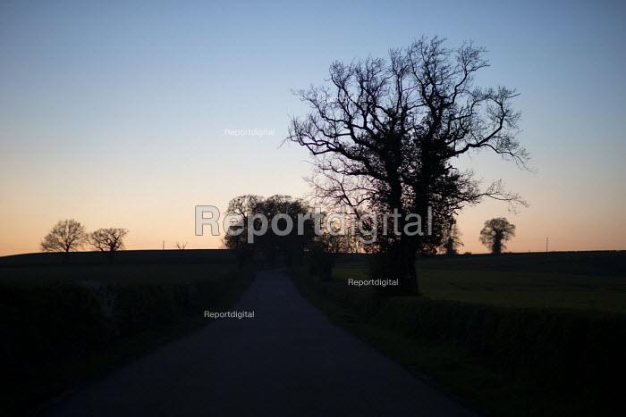 Trees at dusk, Warwickshire - John Harris - 2017-04-07