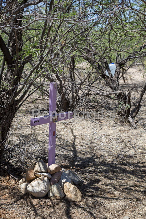 Tucson, Arizona - Members of the Tucson Samaritans place crosses in the desert at the places where the remains of migrants were found. Hundreds of migrants from Mexico and Central America have perished in recent years as they tried to evade U.S. Border Patrol checkpoints. More than 500 crosses planted in Arizona by the Samaritans and other groups now mark the spots where they died. Water was placed in the tree in the background for others in need. - Jim West - 2017-04-18