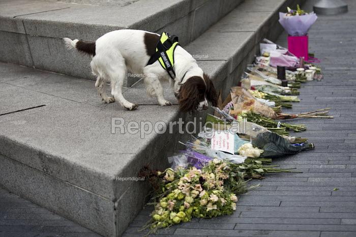 Explosives dog sniffs floral tributes at a Vigil to honour victims of the London Bridge terrorist attack, City Hall, Potters Fields Park, London. - Jess Hurd - 2017-06-05