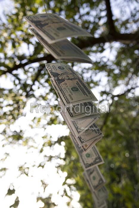 Magic money tree, dollars only, anti Brexit Pro EU protest, St James Park, Westminster, London - Jess Hurd - 2017-06-30