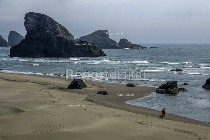 Oregon, USA Beach, rocks, dog wealker and surf, Redfish Rocks Marine Reserve, Oregon Coast - David Bacon - 2017-08-09