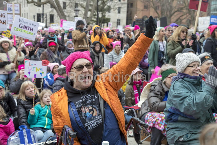 Lansing, Michigan USA Womens march protest against sexual harassment, violence against women and the presidency of Donald Trump - Jim West - 2018-01-21
