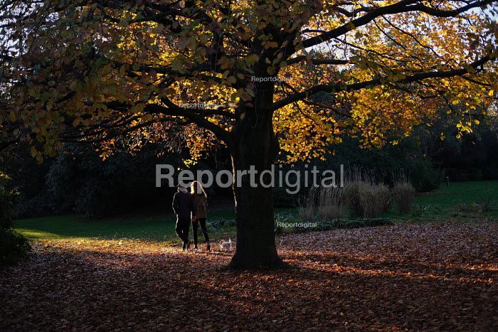 Young couple walking through Victoria Park with their dog on a sunny autumn evening, Tower Hamlets, East London - Jess Hurd - 2018-11-21