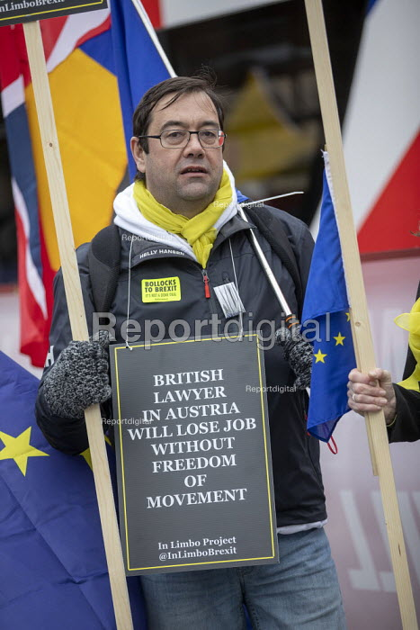 In Limbo Remain protest as Parliament prepares to vote on Brexit, Westminster, London - Jess Hurd - 2019-01-15