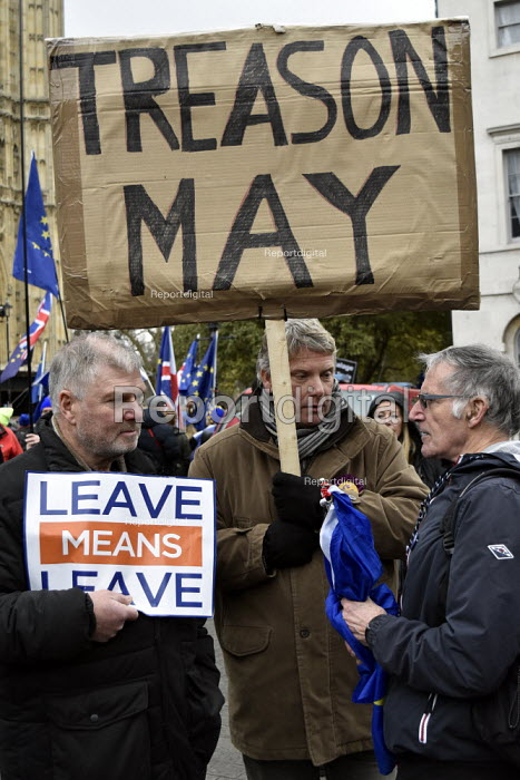 Remain and Leave arguing. Protest as Parliament prepares to vote on Brexit, Westminster, London - Stefano Cagnoni - 2019-01-15