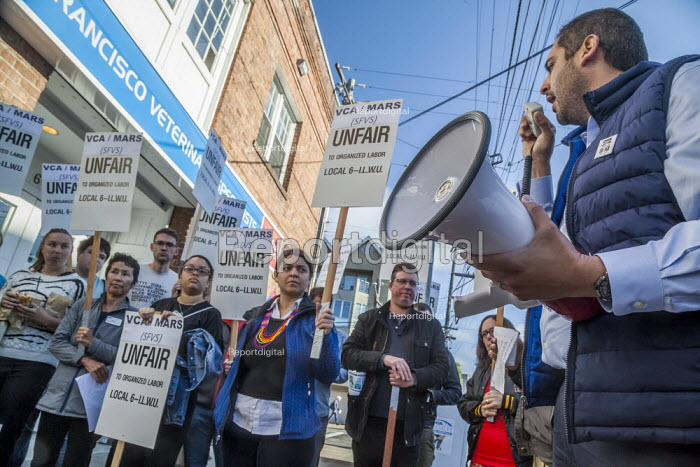 San Francisco, California, USA, veterinary workers strike at the VCA veterinary hospital for an hour to protest the violation of their union rights. Workers voted for the union a year earlier but the company refused to negotiate with the Local 6 of the ILWU. The hospital belongs to Mars Corporation - David Bacon - 2019-06-27