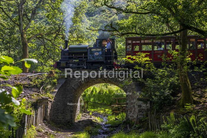 Restored Edward Thomas narrow gauge steam locomotive, built in 1921, carrying tourists on the volunteer run, Heritage Talyllyn Railway, Dolgoch Falls Station, Tywyn, Snowdonia National Park, Wales. - Jess Hurd - 2019-06-28
