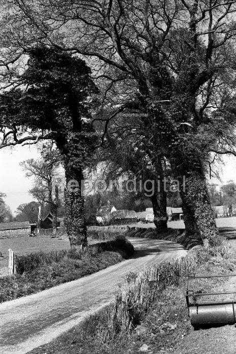 Farm in spring in the Suffolk countryside 1955 - Kurt Hutton - 1955-05-05