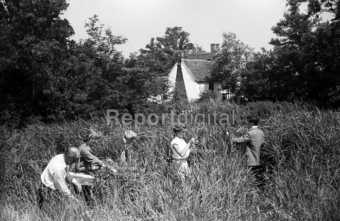 Young people collecting samples, Field Studies, Flatford Mill near the River Stour, East Bergholt, Suffolk 1958 - Kurt Hutton - 1958-06-05