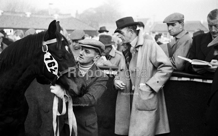 Tattersalls Newmarket Stables Cambridgeshire 1958. Buyers conducting their research at the annual bloodstock auction sales for racehorses - Kurt Hutton - 1958-12-03