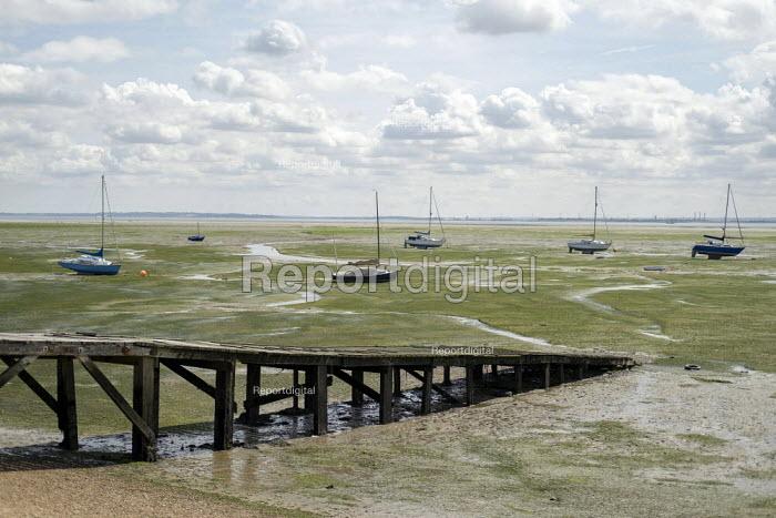Sailing boats, Leigh-on-Sea, Essex. - Jess Hurd - 2019-08-08