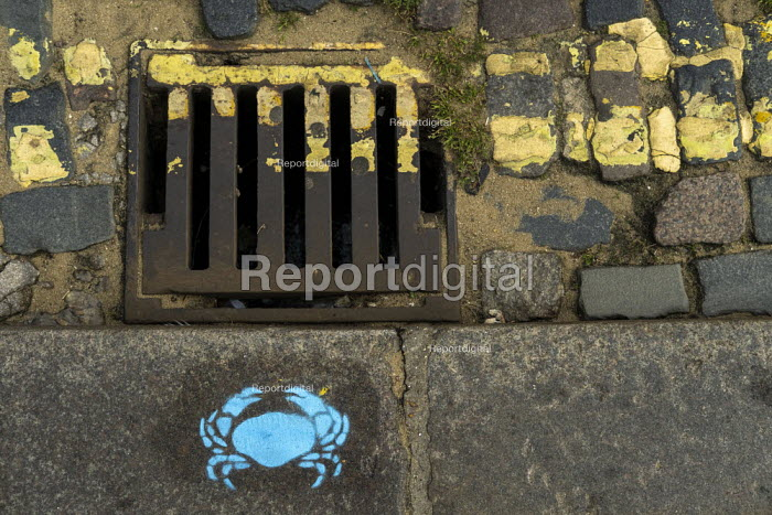 Blue crab stencil, drain and double yellow lines, Leigh-on-Sea, Essex. - Jess Hurd - 2019-08-08