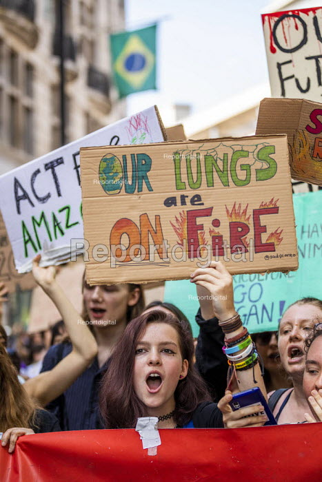 Extinction Rebellion protest against the fire destruction of the Amazon rainforest, Brazilian Embassy, London - Jess Hurd - 2019-08-23