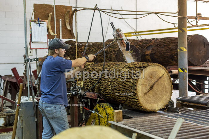 Michigan, USA: Worker cutting logs, The Holland Bowl Mill, which manufactures bowls and other wood products - Jim West - 2019-10-10
