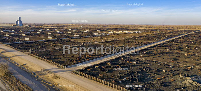 Kersey, Colorado, USA Cattle feedlot, Five Rivers Cattle. It has a capacity of 98,000 cattle - Jim West - 2019-11-07