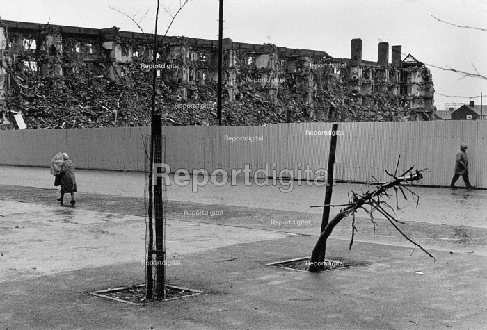 Demolition of tenements and a vandalised tree, Everton, Liverpool, 1983 - Dave Sinclair - 1984-10-12