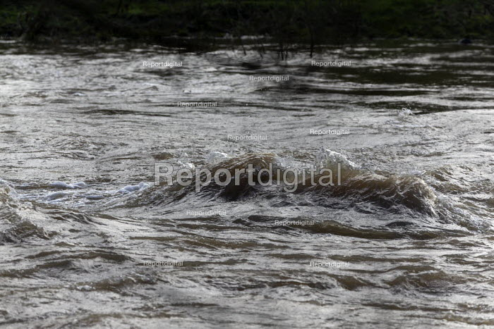 Rising water levels river Severn, Ironbridge, Shropshire - John Harris - 2020-02-23