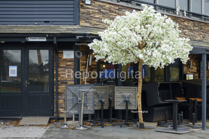 Closed restaurant, blooming fake tree and piled up table and chairs, Stratford-upon-Avon - John Harris - 2020-11-17