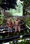 A Shell oil pipeline running through the forest and through an Ogoni village. - Adrian Arbib - 10-11-1999