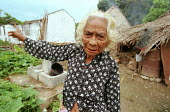 An elderly woman standing in front of her house, which had been destroyed during the recent conflicts between the Pro-Indonesian militia and the rebel forces, in the East Timor Crisis. - Boris Heger - 2000s,2004,age,ageing population,anti-independence,armed forces,Asia,asian,asians,BME minority ethnic,building,buildings,capital,cities,city,conflict,conflicting,conflicts,crisis,Democratic,destroyed,