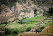 Local farmers walking along a path to their fields in the Chapare region, Bolivia, known for its Coca production. - Boris Heger - 10-12-2009