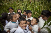 Children playing in a maize field, Bolivia. - Boris Heger - 2010,2010s,americas,Amerindian,Amerindians,Bolivia,Bolivian,Bolivians,boy,boys,child,CHILDHOOD,children,corn,country,countryside,crop,crops,edu,educate,educating,education,educational,EMOTION,EMOTIONA