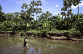 A Tule woman going to the nearby river to fetch water. This village of Indigenous Tule have been displaced by conflict, to the Panama border region of the Darien gap. Their culture is based on a stron... - Boris Heger - 2010,2010s,americas,Amerindian,Amerindians,border,communities,community,conflict,Cuna,darien,Darien Gap,displaced,displacement,domestic,Dule,employee,employees,Employment,FEMALE,fetch,fetching,housewo
