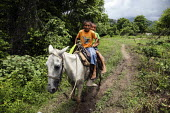 Tule children riding a donkey This village of Indigenous Tule have been displaced by conflict, to the Panama border region of the Darien gap. Their culture is based on a strong relationship with the l... - Boris Heger - 2010,2010s,americas,Amerindian,Amerindians,animal,animals,border,boy,boys,child,CHILDHOOD,children,communities,community,conflict,country,countryside,Cuna,darien,Darien Gap,Darien National Park,displa