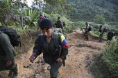 A group of the FARC guerilla move along a mountain path after they attacked an army position - Boris Heger - 24-06-2010