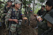 Members of the FARC guerilla taking cover under trees to avoid being seen by the army, receive their food ration. - Boris Heger - 26-06-2010