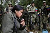 An indigenous woman FARC guerilla radio operator talks to the central command by radio to pass news, as fellow companions listen to a political comuniqu - Boris Heger - 2010,2010s,americas,Amerindian,Amerindians,armed,Armed Forces,arms,army,camp,camps,Civil War,Colombia,Colombian,Colombians,columbian,columbians,command,communicating,communication,communism,Communist