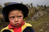 A local child on the footpath to the mountain range of El Cocuy,culminating at a height of 5400 meters, Colombia. The plants in background, locally named frailejones (espelatia), are a rare protected... - Boris Heger - 09-03-2007