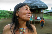 An Embera woman stands near her traditional hut, indigenous Embera village of Sobiaquiru, Darien region, Panama, August 2004. This region is very remote. - Boris Heger - 2000s,2006,age,ageing population,americas,Amerindian,Amerindians,BAME,BAMEs,BME,bmes,Boca de cupe,Cana,clearing,communities,community,country,countryside,Da,Darien Gap,diversity,elderly,Embera,Embera-
