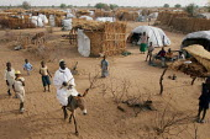 General view, IDP camp of Gereida, Darfur region, Sudan, May 2006. - Boris Heger - 07-05-2006