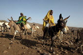Local people walk with their cattle, near Abata, at the foot of the Djebel Mara mountain range, Darfur region, Sudan, May 2006. - Boris Heger - 16-05-2006