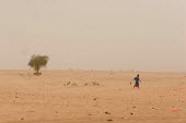 A lone woman walks in the desert near the IDP camp of Tawila, Darfur region, Sudan, May 2006. - Boris Heger - 18-05-2006