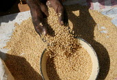 Women refugees from Darfur sell some grain in the market of the Farchana refugee camp, Eastern Chad, near the border with the Darfur region of Sudan. October 2005. - Boris Heger - ,2000s,2005,agencies,agency,aid,aid agency,assistance,border,bought,buy,buyer,buyers,buying,camp,camps,cereal crop,Chad,Chadian,charitable,charities,charity,Civil War,commodities,commodity,conflict,co