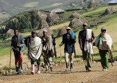 Farmers going to the fields with their huts in background, South Wollo region, Ethiopia, August 2005. - Boris Heger - 08-09-2006