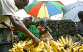 Locals buy some bananas near Goma, Eastern Congo (DRC), May 2004. - Boris Heger - 18-05-2004