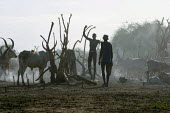 Local Dinka men gather their cattle at the end of the day, near Padak, South Sudan, April 2004. - Boris Heger - 28-04-2004