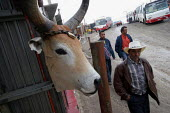Locals pass in front of a butchers shop in the street, in Los Altos de Cazuca, one of the worst slums in Bogota, Colombia, January 2006. There are an estimated 3 million people displaced by conflict w... - Boris Heger - 2000s,2006,AGRICULTURAL,agriculture,americas,animal,animals,armed,barrios,barrios barrio,Bogota,bought,butchers,buy,buyer,buyers,buying,cattle,colombia,Colombian,Colombians,commodities,commodity,confl
