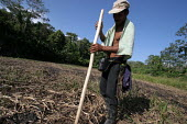 A colombian refugee prepares the ground to plant some rice in a dried up riverbed near Arrevachi, Darien region, Panama, January 2006. This region is very remote. - Boris Heger - 30-08-2006