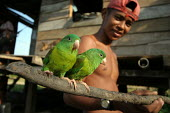 A Colombian refugee and the birds he recently caught in the jungle, El Real, Darien region, Panama, January 2006. This region is very remote. - Boris Heger - 30-08-2006
