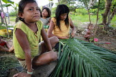 Internally displaced indigenous children helping their mother weave some leaves into a roof for their shelter on the outskirts of San Jose del Guaviare, Colombia. - Boris Heger - 17-01-2011