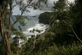 The remote Pololu Valley was the site of an ancient Hawaiian settlement, before colonization. The Hamakua coast on the windward side of the big island of Hawaii, Pacific Ocean. - David Bacon - 13-02-2010