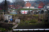 An England flag proudly on display in an allotment, Eldon Street, Barnsley Centre. - Connor Matheson - 23-03-2012