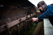 A young man cleans a chain in his back garden farm, Ryhill Wakefield. Yorkshire - Connor Matheson - 10-12-2013