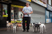 A Yorkshire man with his seven whippets in the ex pit village, Maltby, Rotherham. - Connor Matheson - 28-04-2014