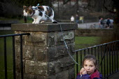 A young girl walking her cat on a leed. Endcliffe park Sheffield, South Yorkshire. - Connor Matheson - ,2010s,2015,animal,animals,cat,cats,child,childhood,children,cities,city,feline,female,females,girl,girls,juvenile,juveniles,kid,kids,Leisure,LFL,LIFE,outdoors,OWNERSHIP,Park,parks,people,pet,pets,REC