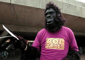 2nd year student dressed in a gorilla suite handing out nightclub flyers to supplement his student loan during Fresher's Week at the University of Sheffield - David Bocking - 26-09-2001
